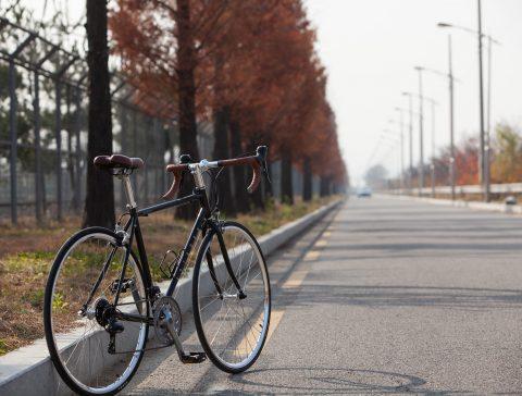 rowery i trasy - giant