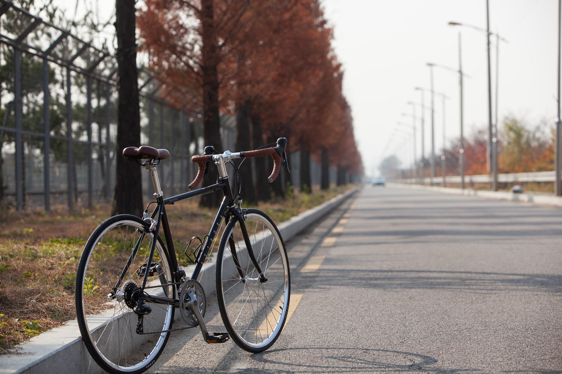 Rower szosowy marki Giant – sportowa jazda